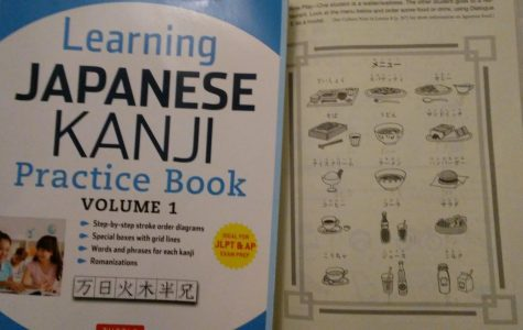The author's Japanese practice workbook and grammar textbook.