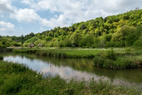 Image taken by Nick Fewings in Arundel, U.K.